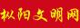 枞阳文明网